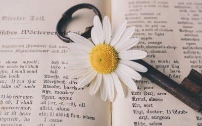 Translatologie: věda o překladu