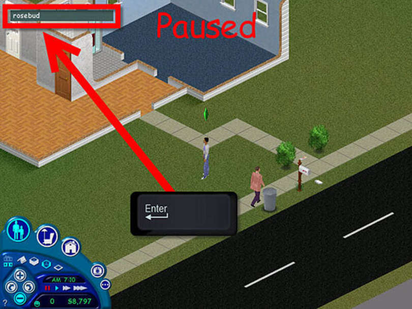 SIMS rosebud cheat