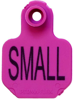 Perma-Flex  Small Cattle Ear Tag - Blank Tag