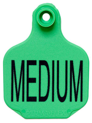 Perma-Flex  Medium Cattle Ear Tag - Blank Tag