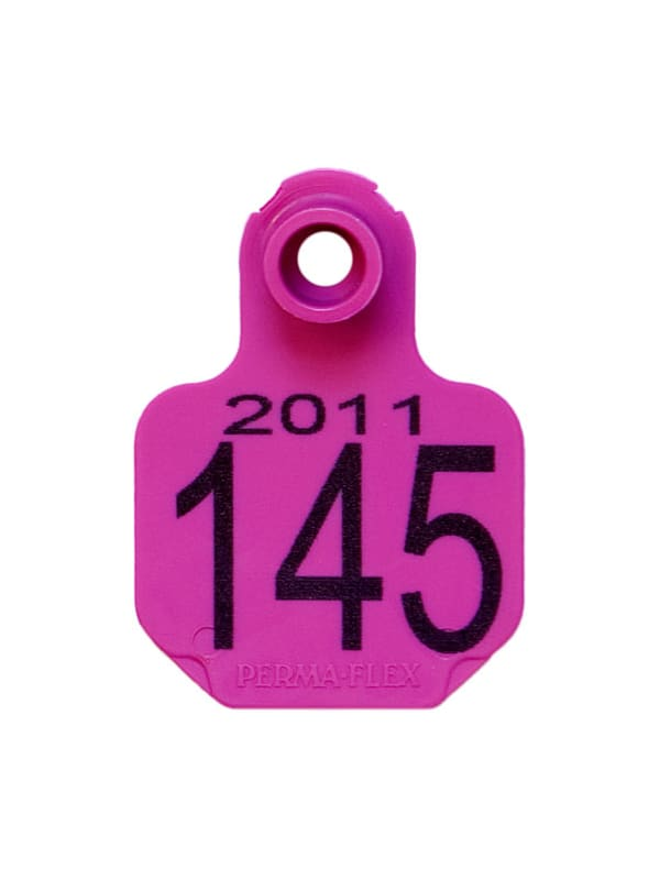 Perma-Flex Small Cattle Ear Tag - Custom Example