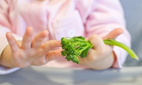 Quand des repas végétaux viennent compléter l'alimentation de bébé