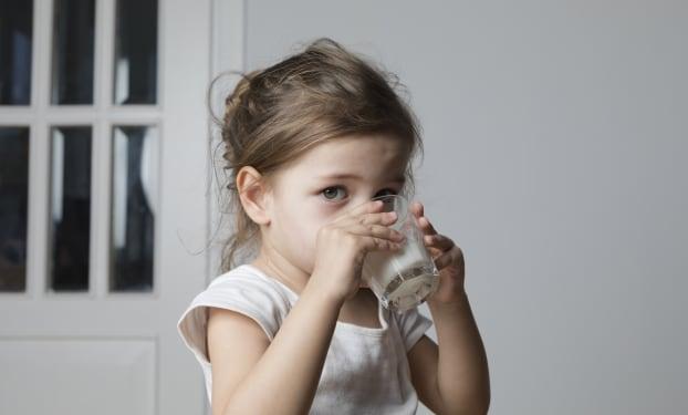 Melkzuurbacteriën voor een betere verwerking