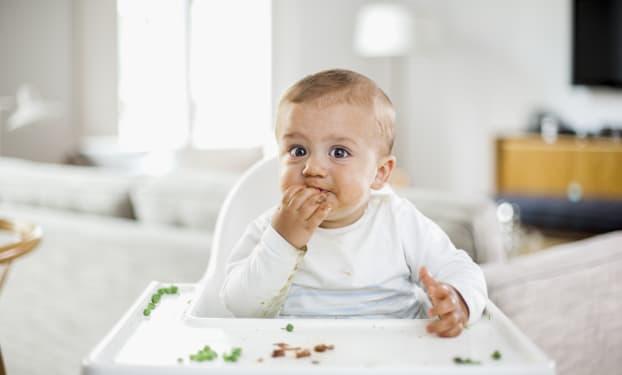 Protéines et petits repas moulinés : Bébé diversifie son alimentation