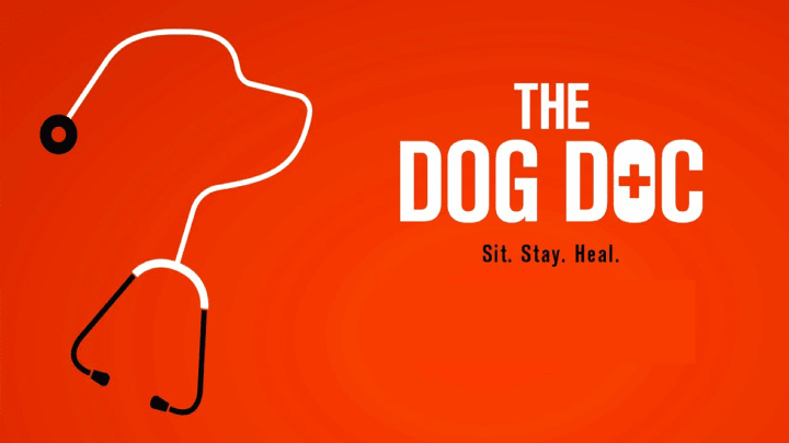 The Dog Doc