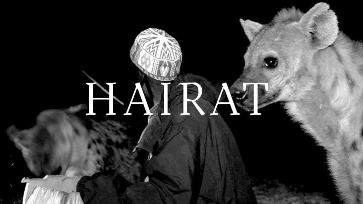Hairat