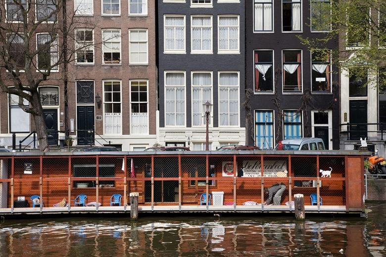 De Poezenboot in Amsterdam