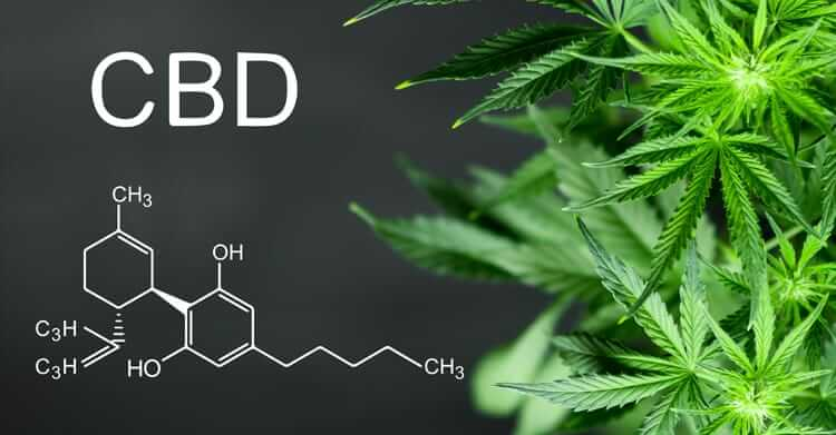 What is cbd