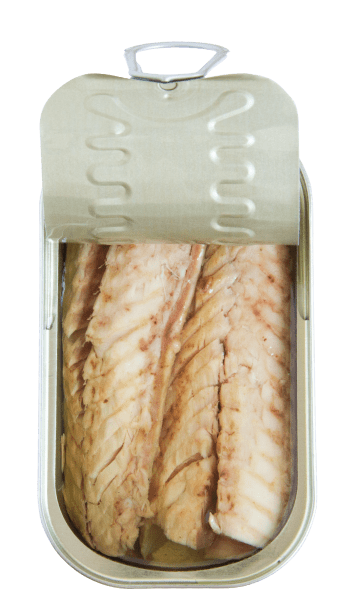 mackerel fillets in olive oil open