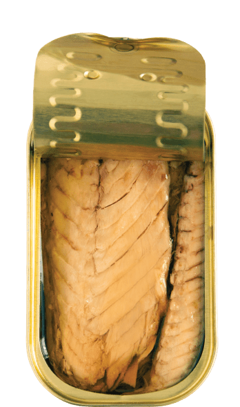 mackerel fillets in spicy olive oil open