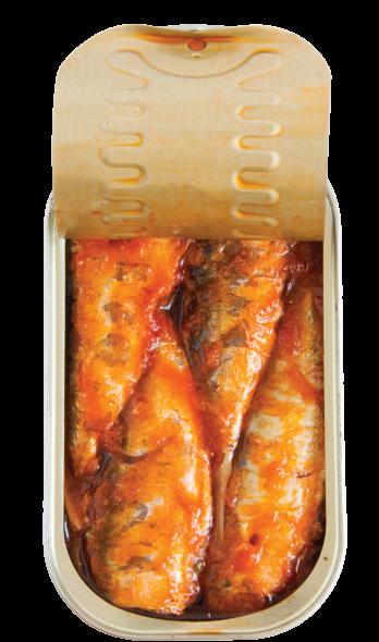sardinhas em tomate aberto