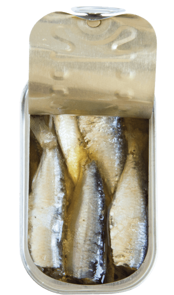 sardines in vegetable oil open