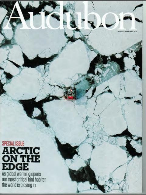 Audubon on the Arctic
