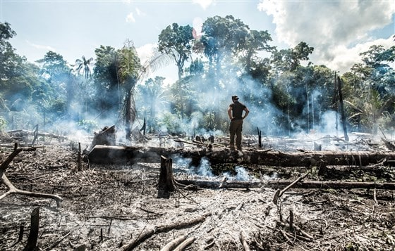 Image: Amazon rainforest fire