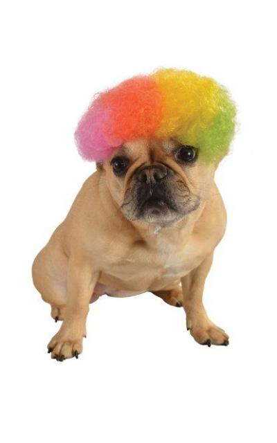 Rubie's Costume Rainbow Wig