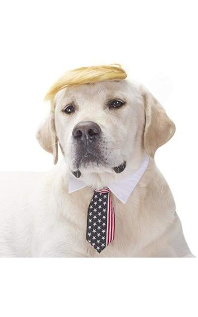 FOMATE Dog Trump Wig