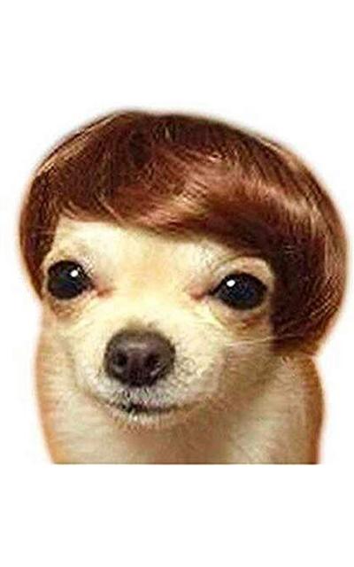 VANVENE Toupee Wig
