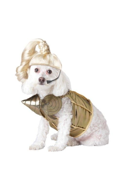 Pup-A-Razzi Pop Queen Dog Costume