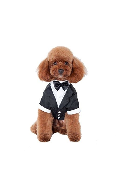 GabeFish Pets Black Wedding Suit