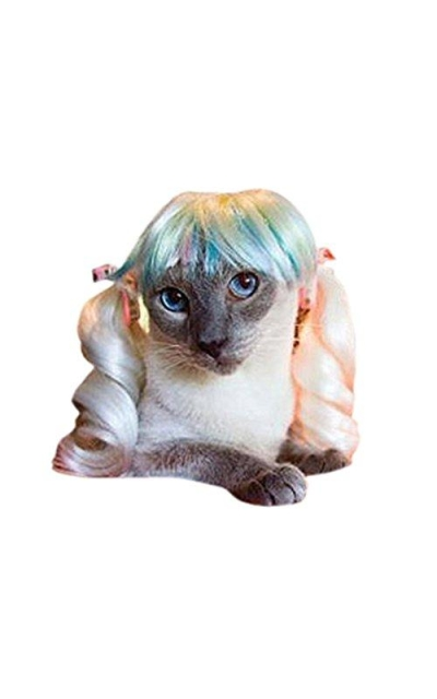 Drasawee Puppy Pet Wigs