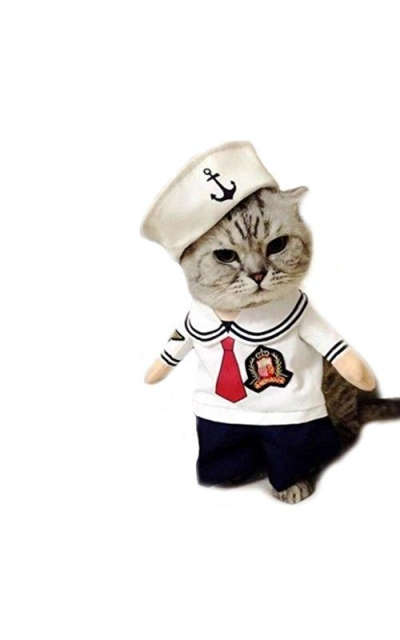 Worderful Dog Sailor Costume