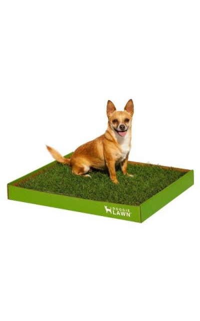 DoggieLawn Disposable Dog Potty -Real Grass