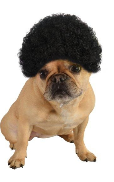Rubie's Pet Costume Afro Curly Wig