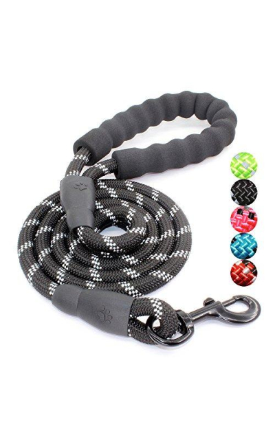 BAAPET 5 FT Strong Dog Leash Comfortable Padded Handle