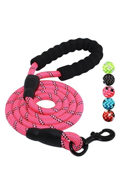 BAAPET 5 FT Strong Dog Leash Comfortable Padded Handle Highly Reflective Threads