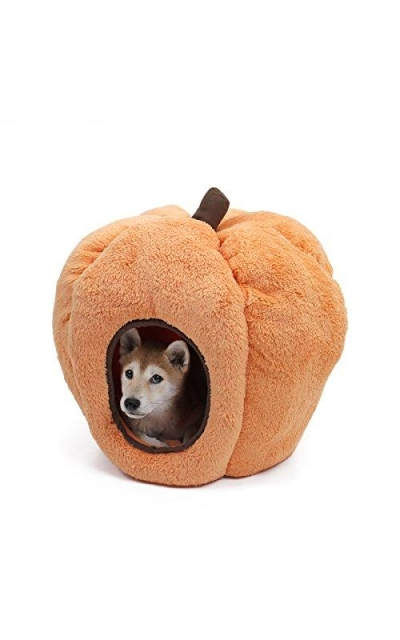 PAWZ Road Halloween Cozy Cat Bed
