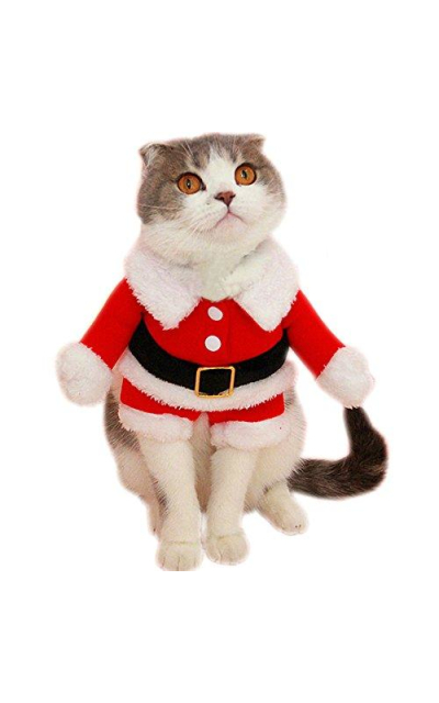 Bolbove Pet Christmas Santa Claus Suit Costume