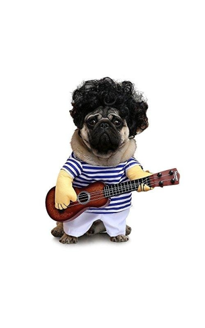 FanQube Fancy Guitar Player Pets Costume