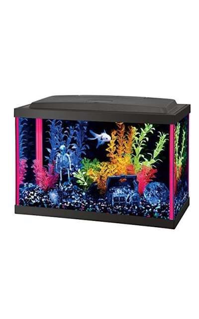 Aqueon Fish Aquarium Starter Kits LED NeoGlow