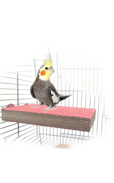 Colorful Wood Bird Perch Stand