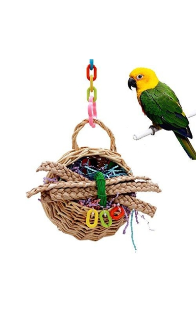 Borange Bird Toys Parrot Foraging Toy Cockatiel Chewing Swing