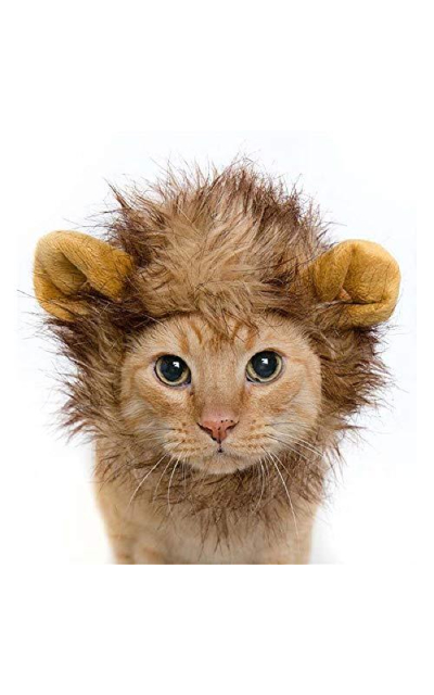Lion Mane Wig for Cats and Small Dogs