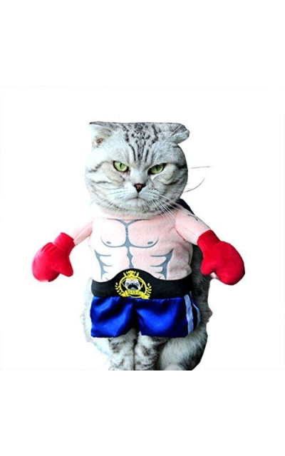 SMALLLEE_Lucky_Store Boxer Costume