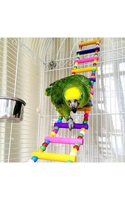 CocoGo Bird Toy for Parrot,Swings,Ladders for Pet Trainning