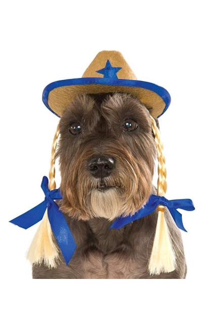 Rubie's Costume Company Pet Cowgirl Hat with Pigtails