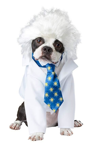 California Costumes Al-Bark Einstein Pet Costume-