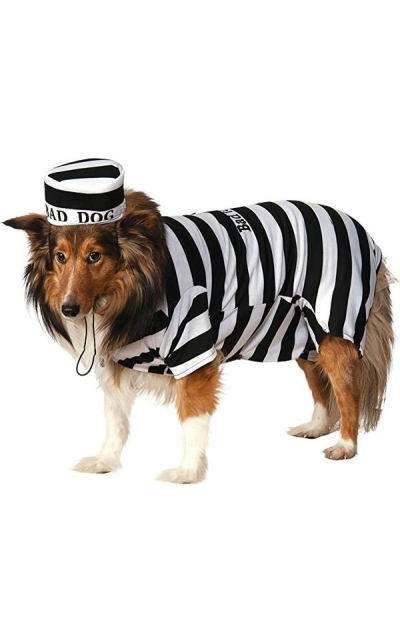 Bad Dog Costume