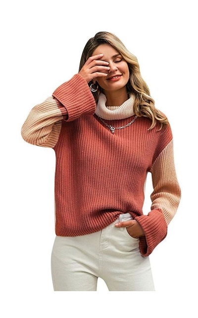 BerryGo  Turtleneck Sweater