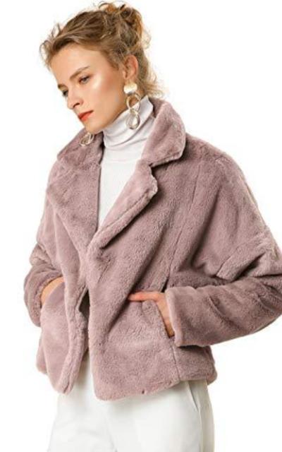 Allegra K Autumn Winter Cropped Jacket