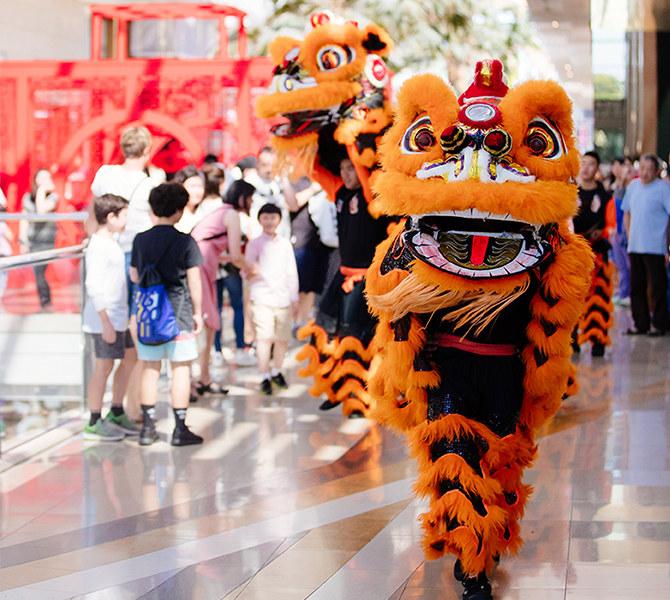 传统舞狮表演