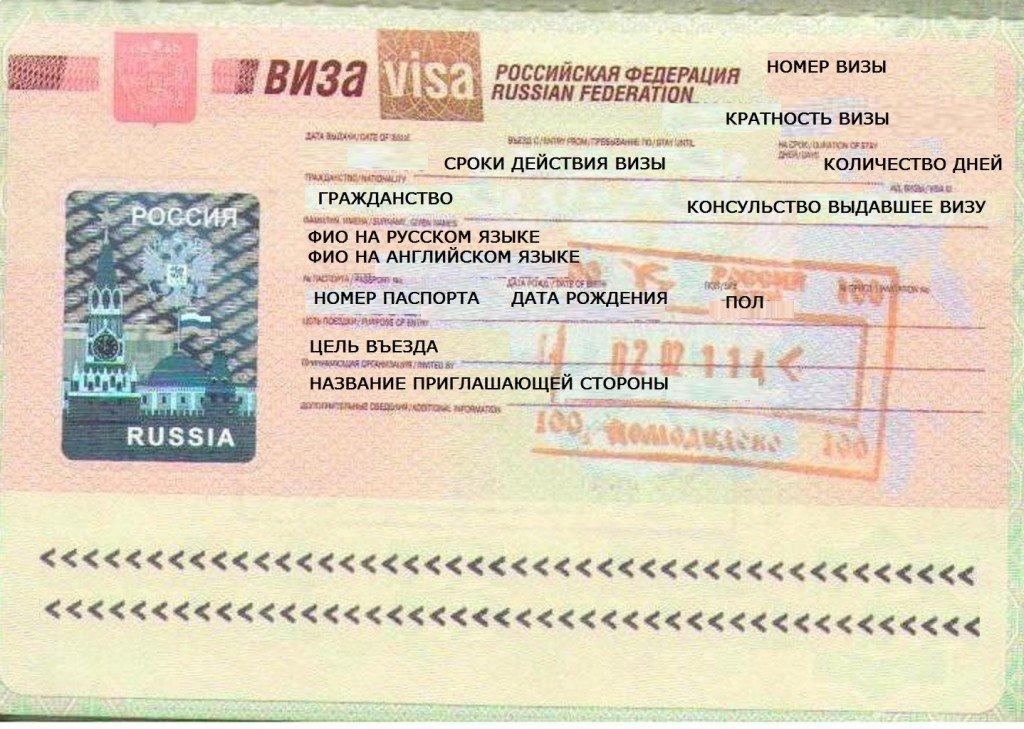 Основные виды виз в Россию для иностранцев в 2019 году
