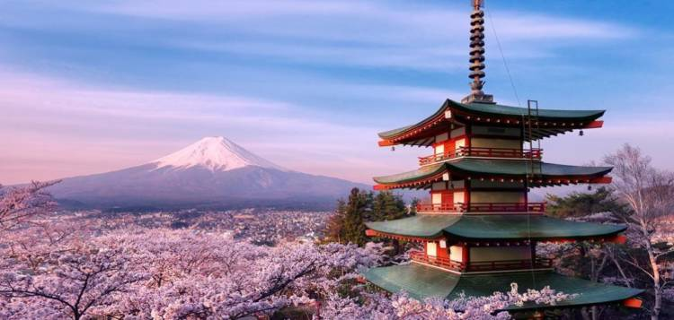 Содержание анкеты на визу в Японию в 2019 году