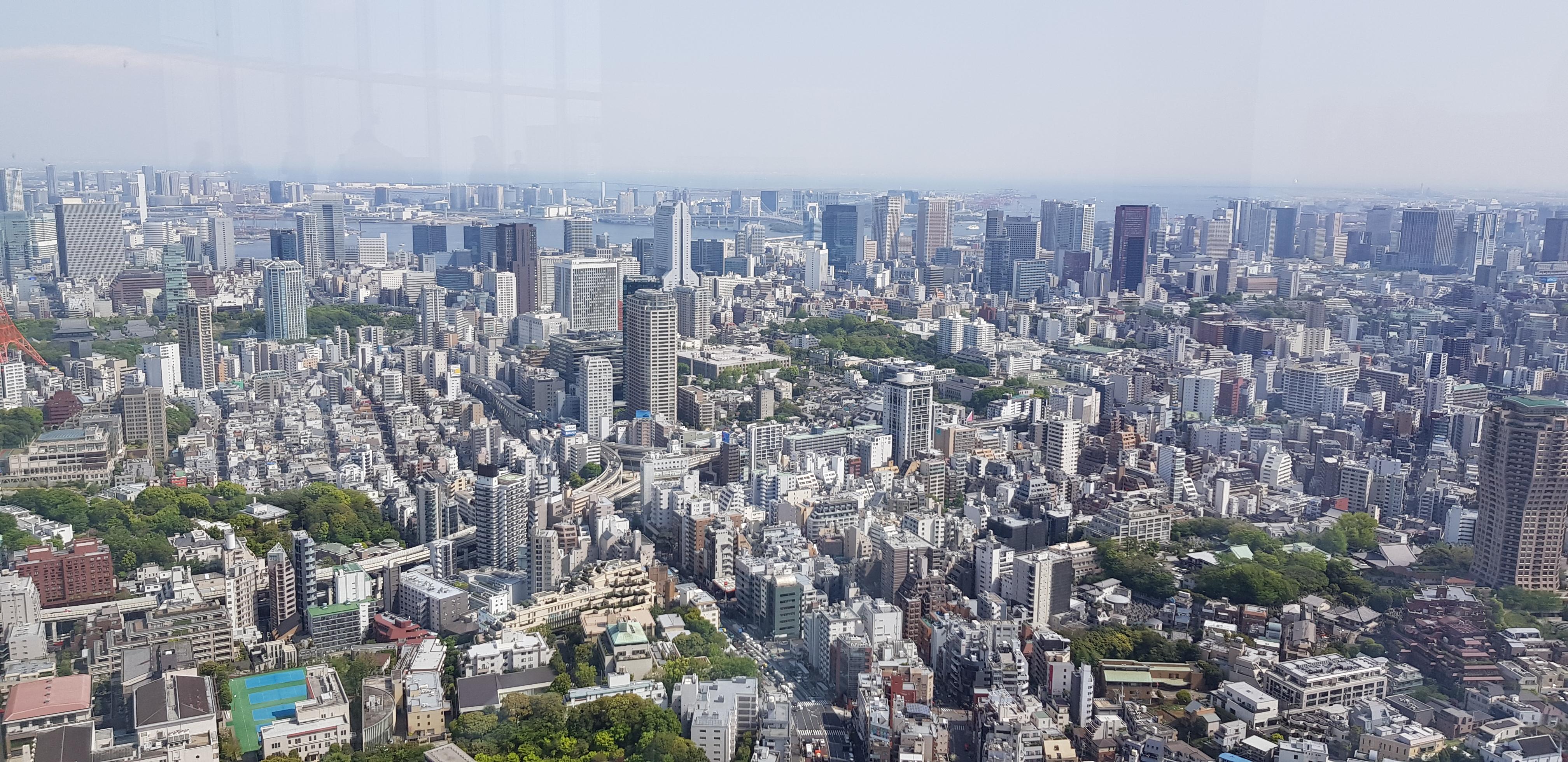 Особенности программы пребывания в Японии для визы в 2019 году