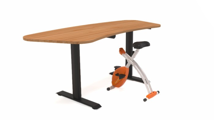 Smart Sit-And-Stand Desk and Smart Under-The-Desk Bike