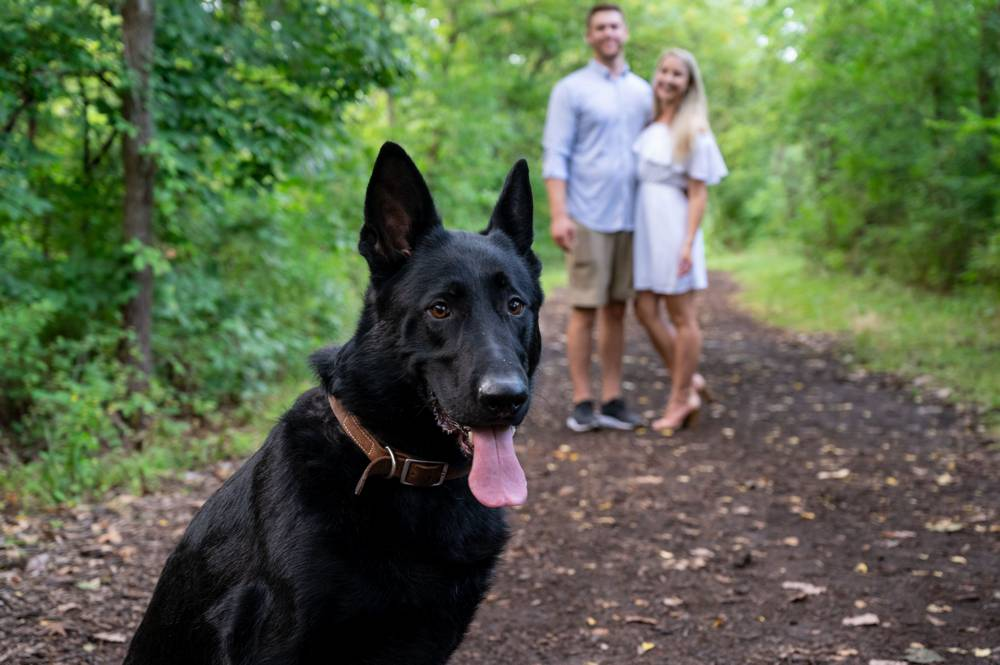 dog in front of couple