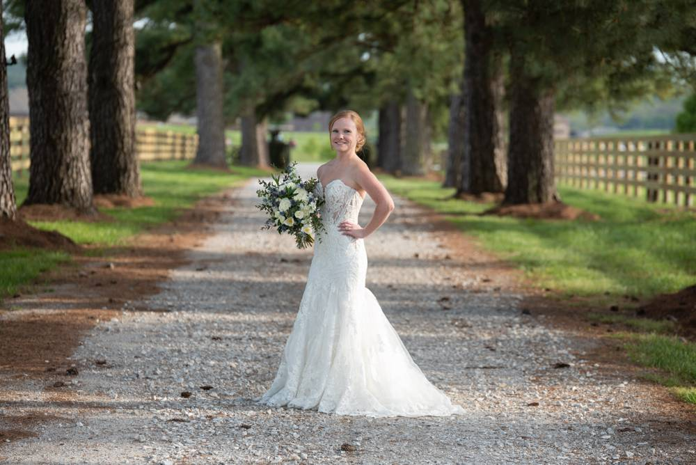 bridal session with rows of trees